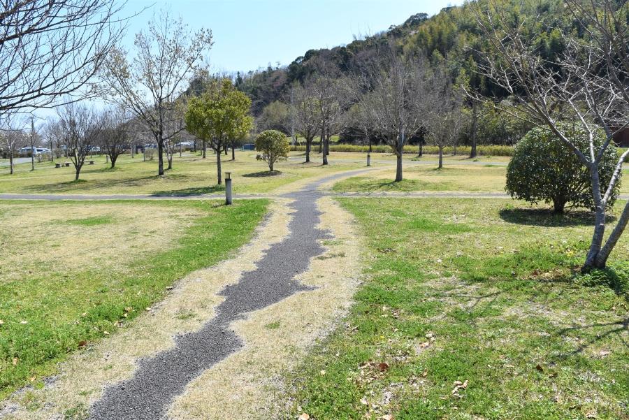 緑あふれる散歩コース