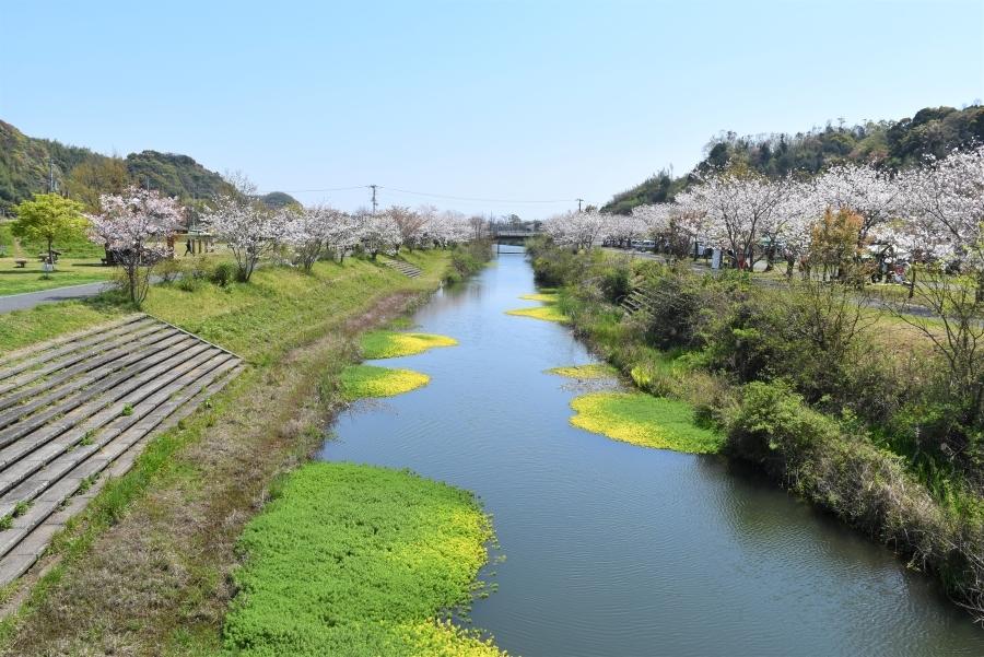 公園の中心部に川が流れています