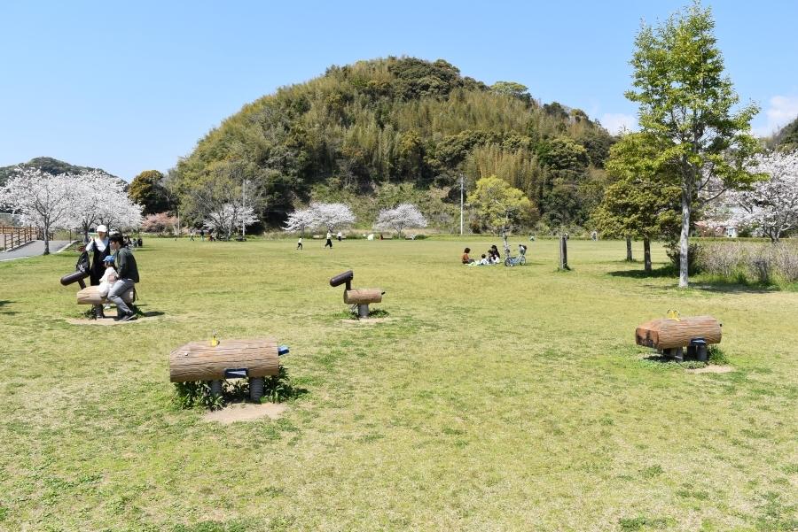 高知県立池公園|高知市南部にある自然豊かな公園。ゆっくり過ごせます