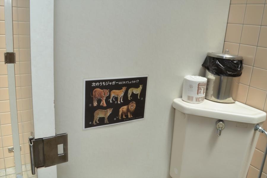 女子トイレ内の個室です