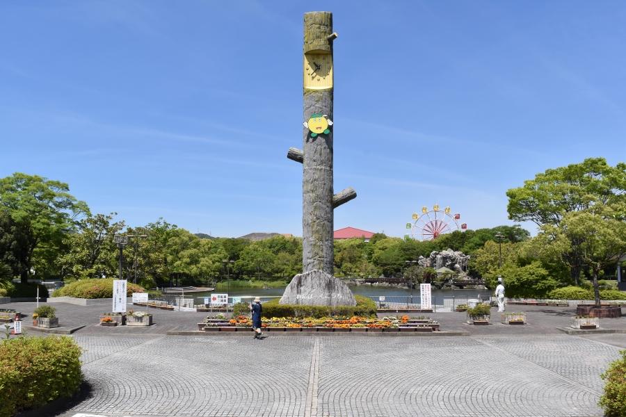わんぱーくこうち・水辺散策広場、イベント広場編|緑いっぱいの公園、子どもの水遊びは滝で決まり!