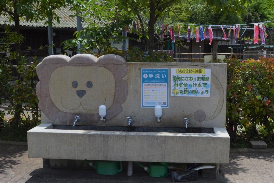触った後は手を洗いましょう