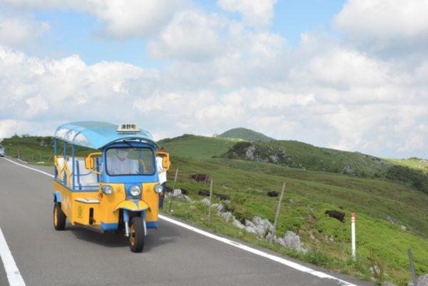 津野町の三輪自動車「ツノトゥク」に乗ってみた|8月は四国カルストを周遊しています