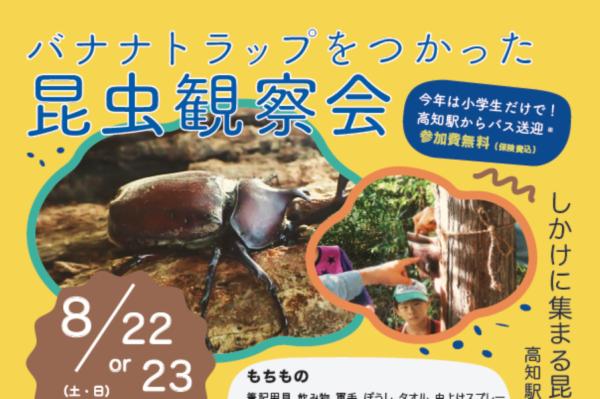森で昆虫を観察しよう! 高知市で「バナナトラップをつかった昆虫観察会」
