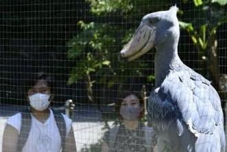 のいち動物公園が今年も「日本一」に選ばれました!