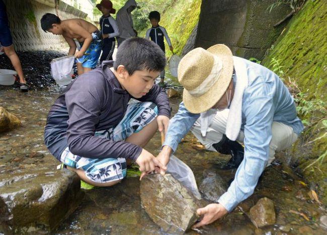 椎名川に生息する生き物を探して観察する子どもたち(室戸市室戸岬町)