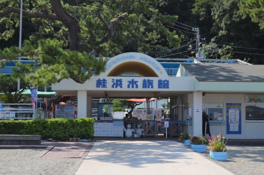 水族館の入り口