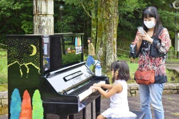 四万十緑林公園で「森のピアノ」を弾いてみませんか