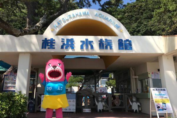 おとどちゃんに会える!|高知市の桂浜水族館で「おとどちゃんのラブラブオータム」