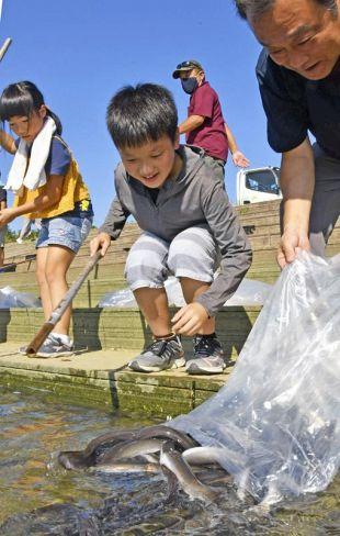 丸々と太ったウナギを放流する下田小児童ら(四万十市鍋島)