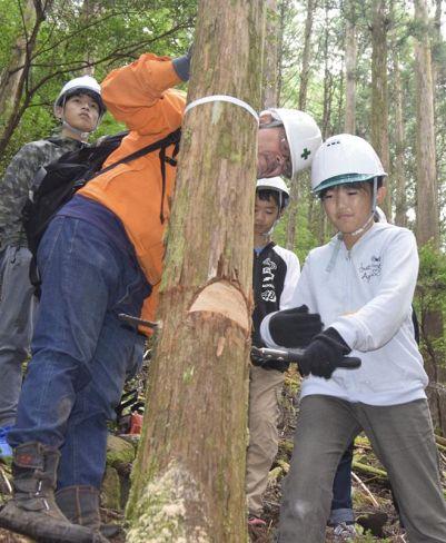 間伐を体験する「森の子ども会議2020」参加者(四万十町窪川中津川)
