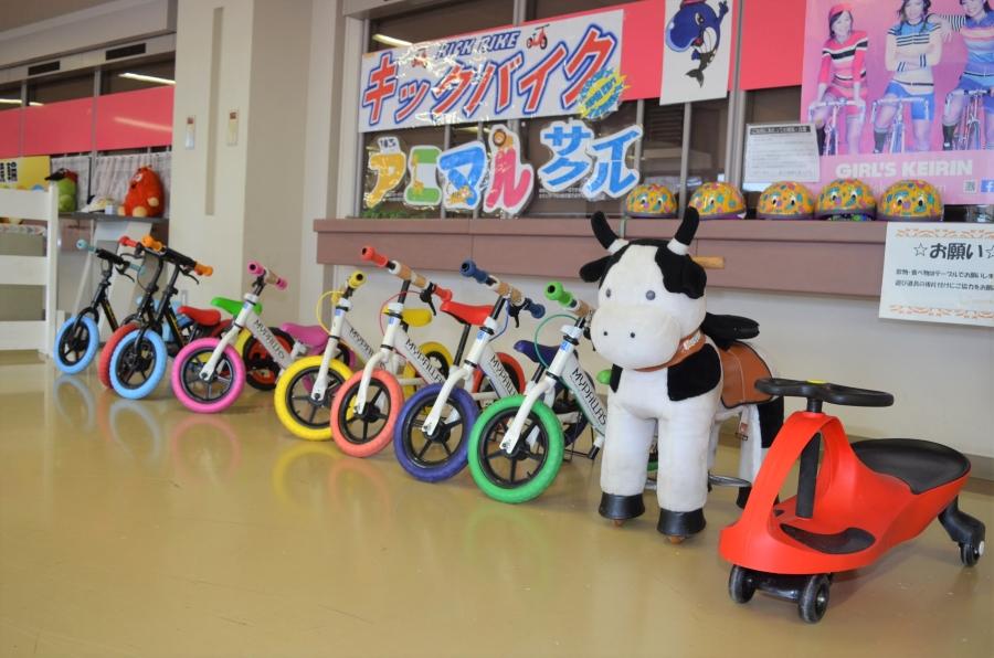 りょうまスタジアム「ファミリールーム」|雨の日でも大丈夫!人気のキックバイクで遊ぼう!
