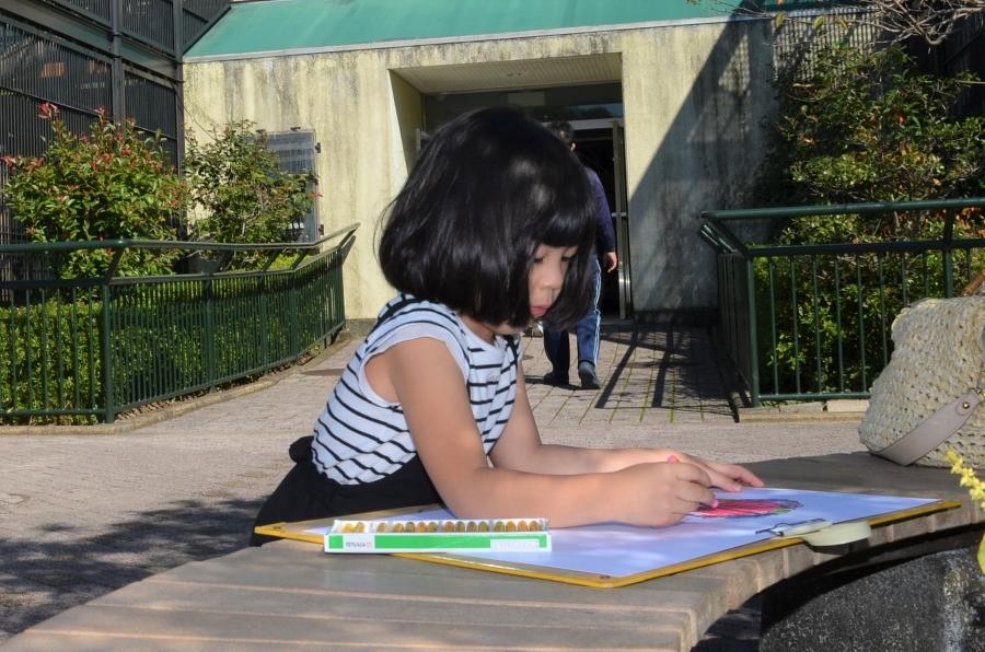子どもたちが動物や観覧車などの絵を描きました わんぱーくこうちで「写生コンクール」