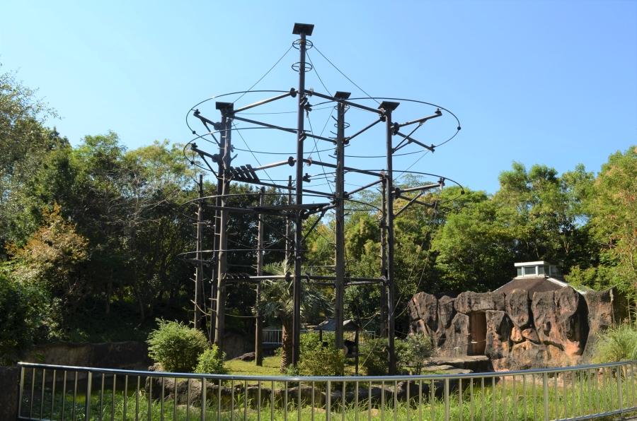高さ 10 メートルのキボンタワー