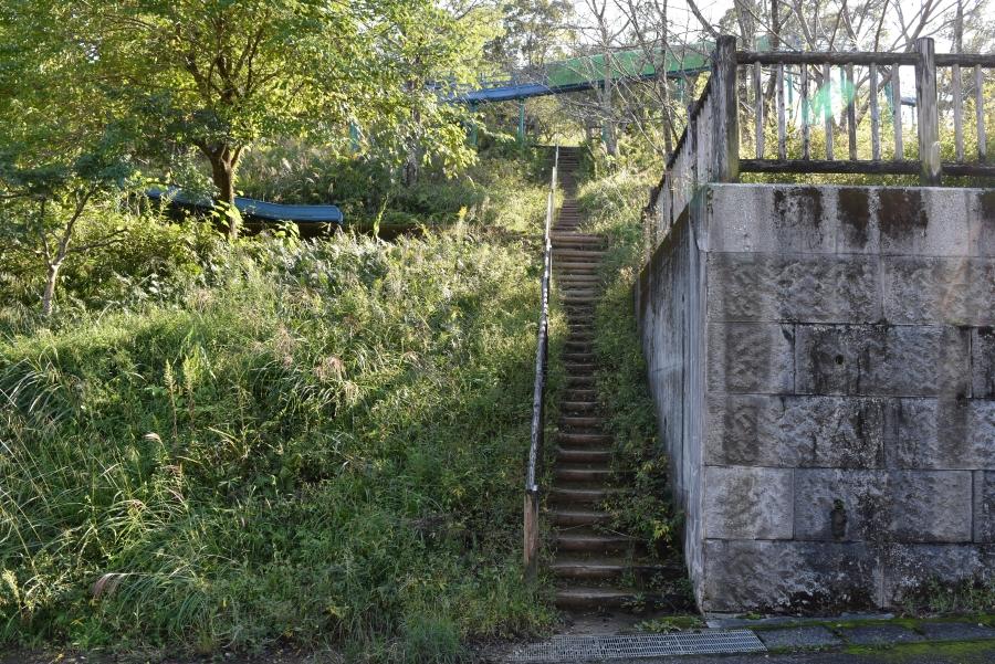 階段を発見!