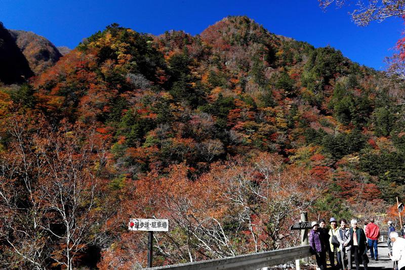 高の瀬峡(徳島県那賀町、2019 年 11 月 18 日)