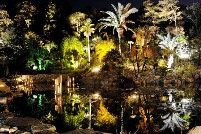 美しく照らされた「ボルディゲラの庭」(北川村野友甲の「モネの庭」)