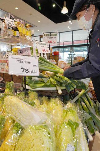 スーパーの野菜売り場。安値が続いている(高知市内)