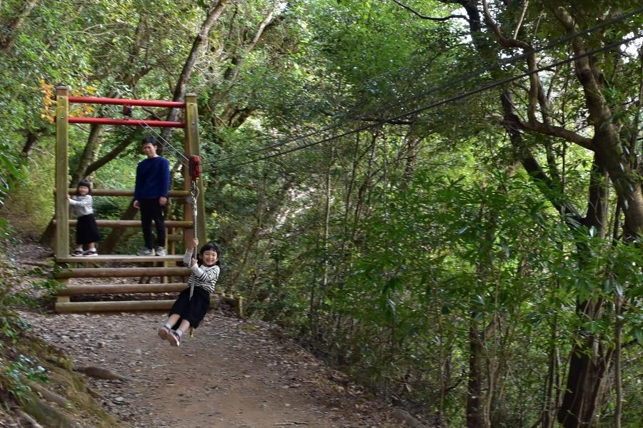 高知県立月見山こどもの森|森の中でアスレチックを満喫!