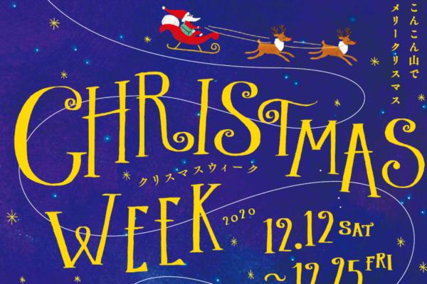 モミノキやフォトスポットでメリークリスマス!|高知県立牧野植物園で「クリスマスウィーク」