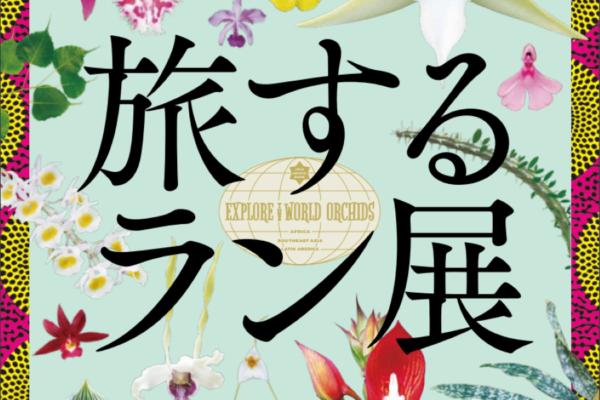 ランの魅力を感じる世界へ|高知県立牧野植物園で「旅するラン展」