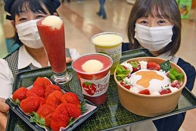 高知県の時短要請は延長せず11日まで|高知の1週間(2021年1月3~9日)