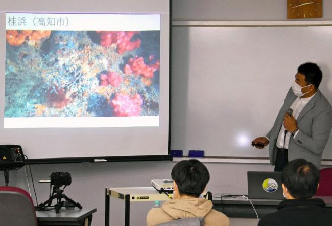 サンゴの写真や動画を見ながら行われた報告会(高知市九反田の「かるぽーと」)