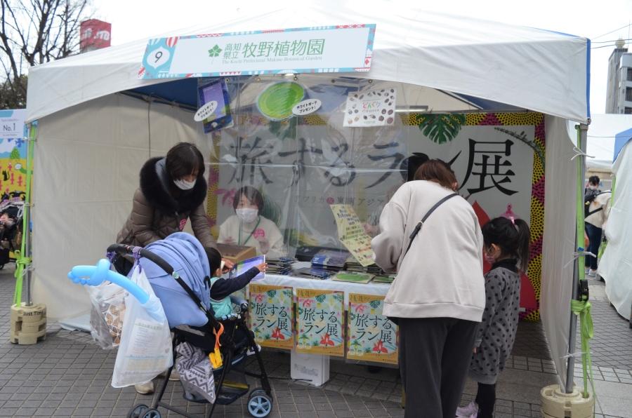 高知県立牧野植物園。ホワイトボードをプレゼントしています