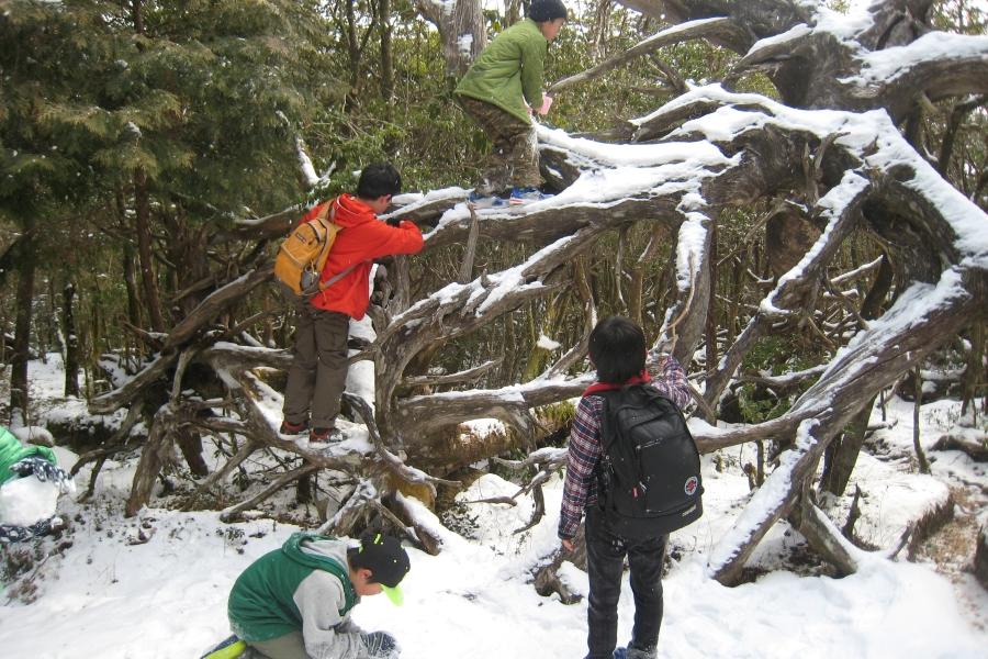 3密避けて親子で遊ぼう|高知市工石山青少年の家で「ぶらり工石山」