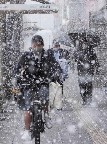 視界がかすむほどの雪が舞い散った高知市内(17日午後4時半ごろ、高知市本町4丁目)