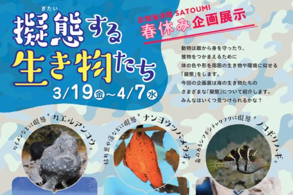 海の生き物を見つけられるかな!?|足摺海洋館「SATOUMI」で「擬態する生き物たち」