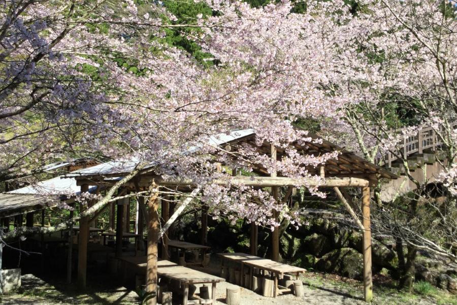 日ノ御子河川公園キャンプ場|手ぶらで!ごみはそのまま!日帰りでBBQと自然遊びが楽しめます!