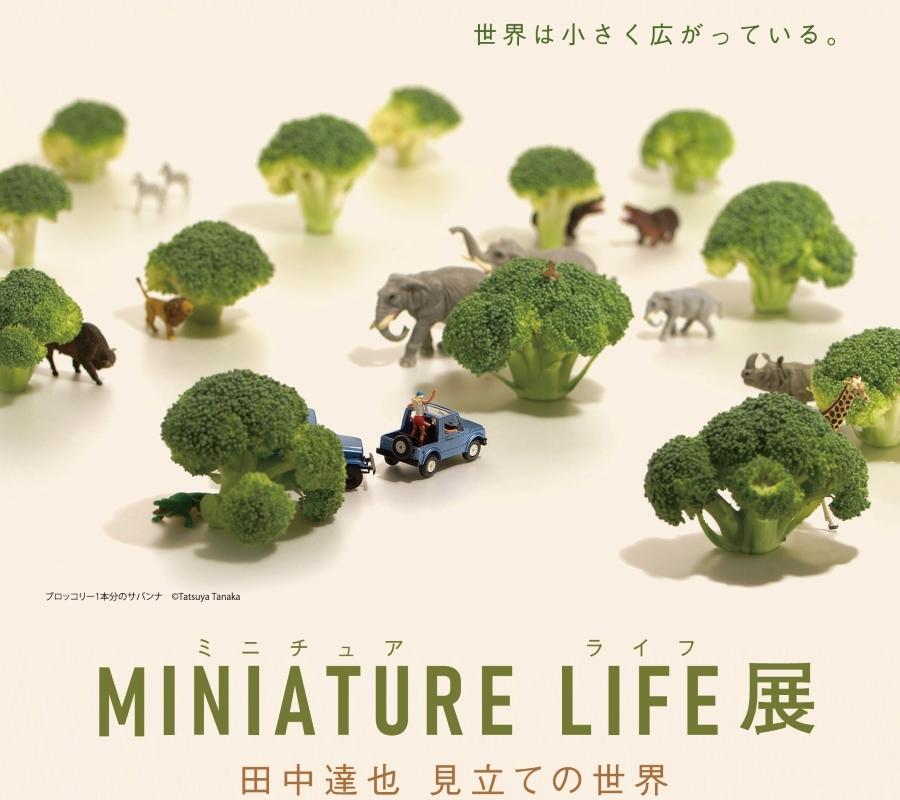 ブロッコリーが木に!?クロワッサンが雲に!?|高知県立美術館で「MINIATURE LIFE展」