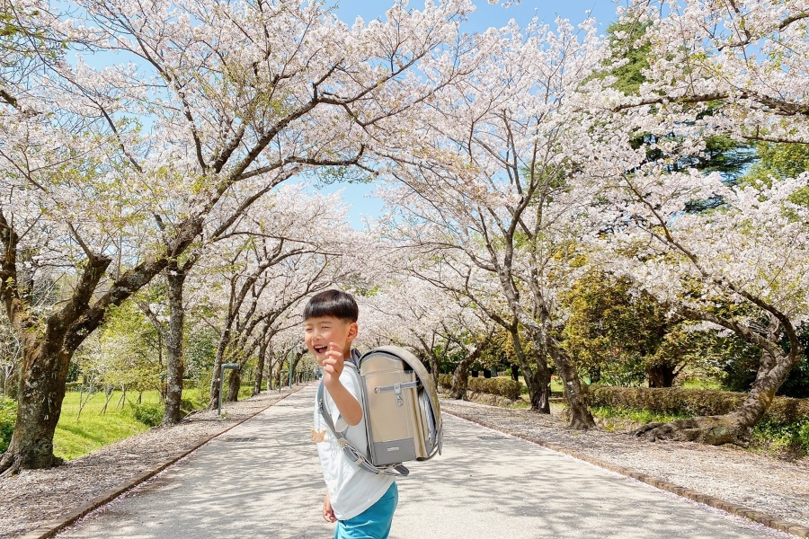 桜並木での振り返りショット。「晴れ晴れフォト」グランプリ作品です