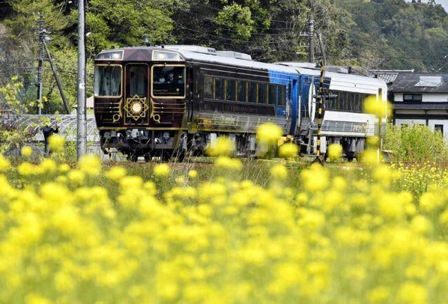 菜の花畑をゆったり走る観光列車(日高村本郷)