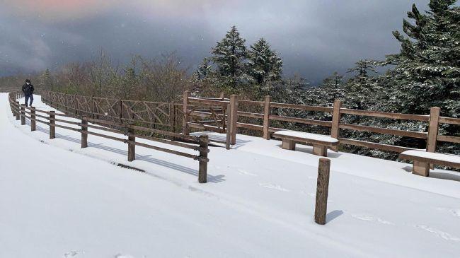 すっぽり雪に包まれた、よさこい峠付近(武田悦子さん提供)