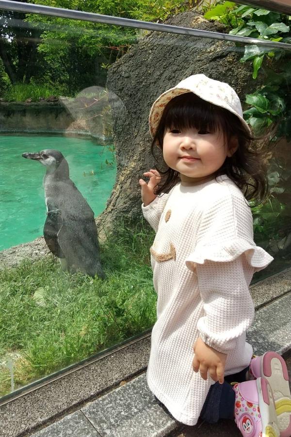 はじめての動物園。お互いに「あっち向いてホイ」してますね…