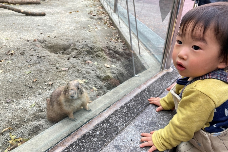 はじめての動物園。同じポーズに、同じ視線…どっちのまね?