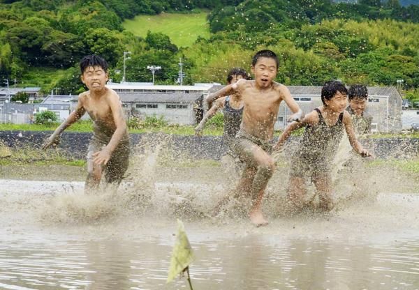 旗の奪い合いで泥んこになりながら田んぼを激走する久礼田小学校の5年生(南国市久礼田)