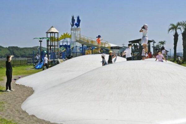 土佐市の新居緑地公園がにぎわっています!