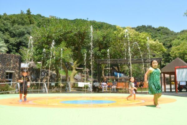 高知県立のいち動物公園に水遊びの新スポット「ちびっこ噴水」が登場!