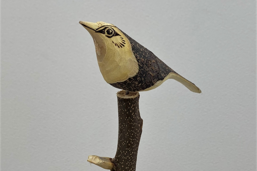 高知新聞住宅総合展示場「ライム」で「バードカービングワークショップ」 木彫りの鳥を作ってみよう