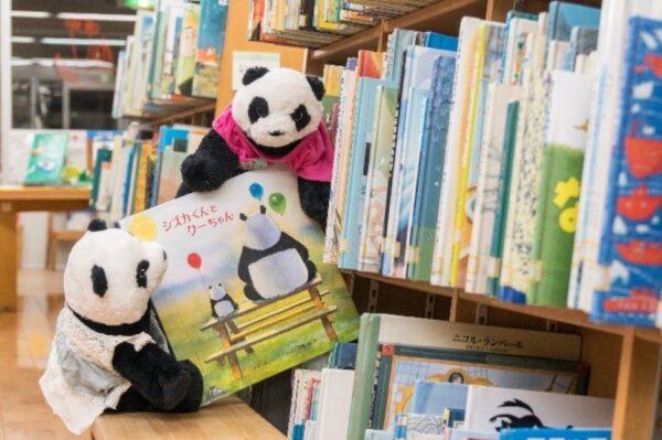高知こどもの図書館で「ぬいぐるみのおとまり会」|あなたのぬいぐるみが夜の図書館で過ごします