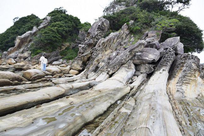 日本ジオパークに認定された土佐清水ジオパーク。活発な大地の変動を記録する竜串海岸(土佐清水市)