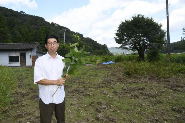 コウゾ畑となる休耕田と、栽培に乗り出した中村達志さん(写真はいずれも土佐市波介)